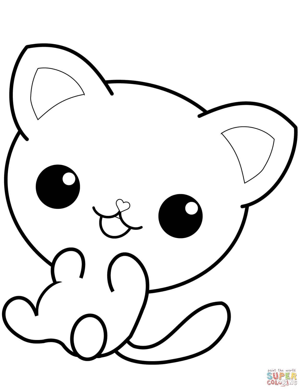חתלתול לצביעה