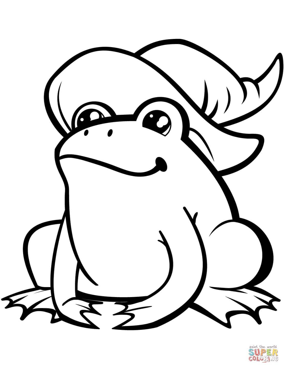 צפרדע עם כובע לצביעה