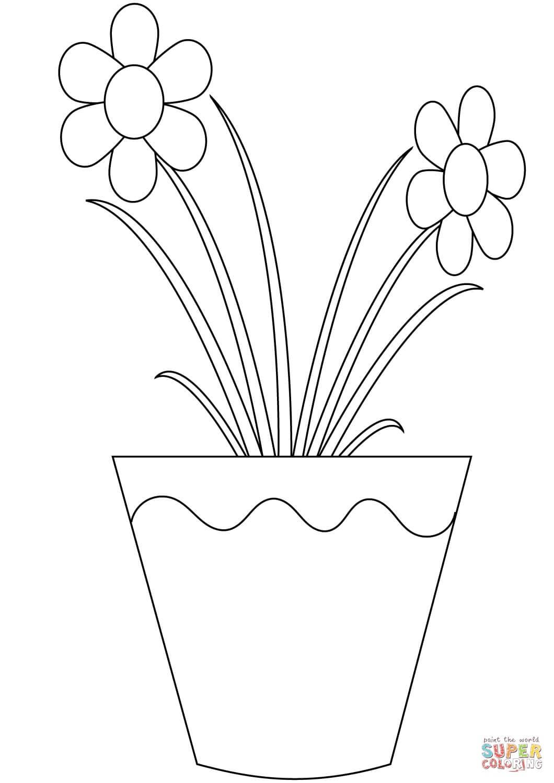 צביעת פרחים לצביעה