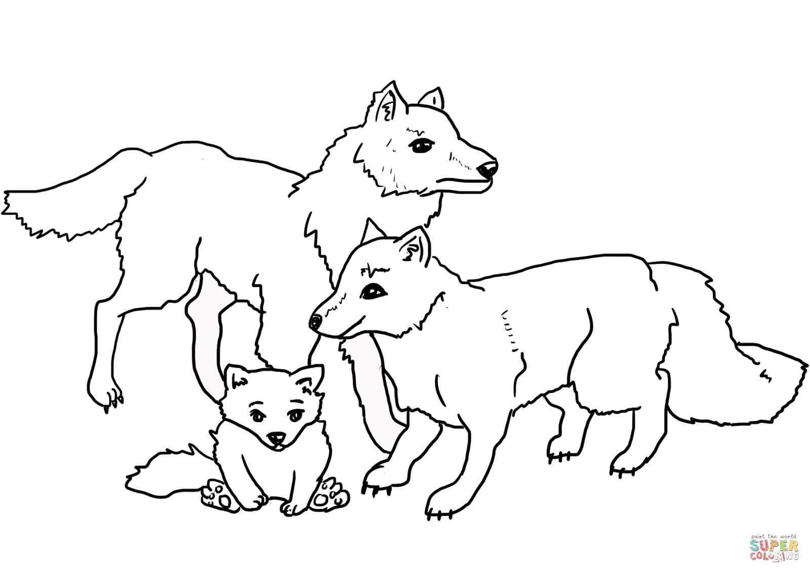 משפחת זאבים לצביעה
