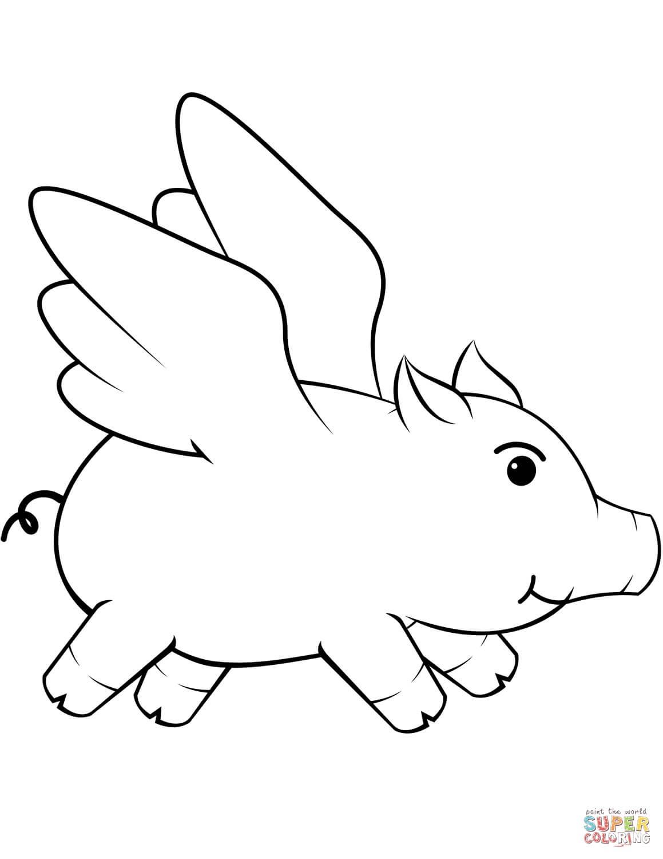 חזיר מעופף לצביעה