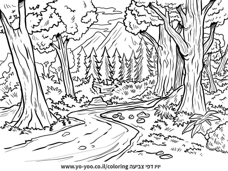 דף צביעה יער