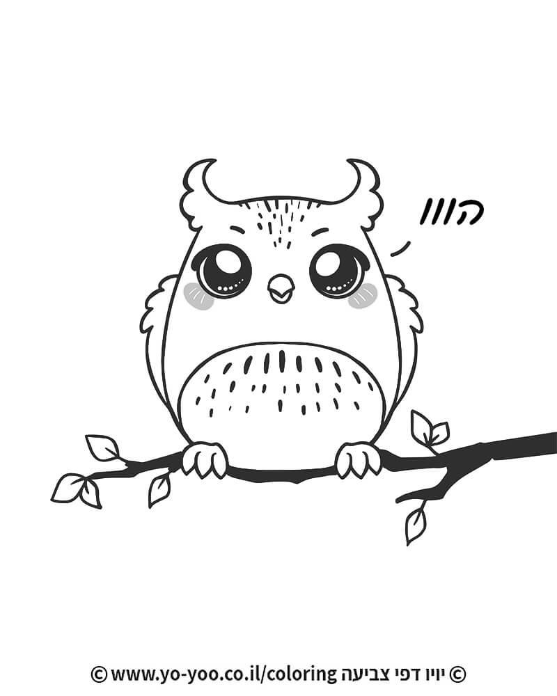 צביעת ינשוף חמוד