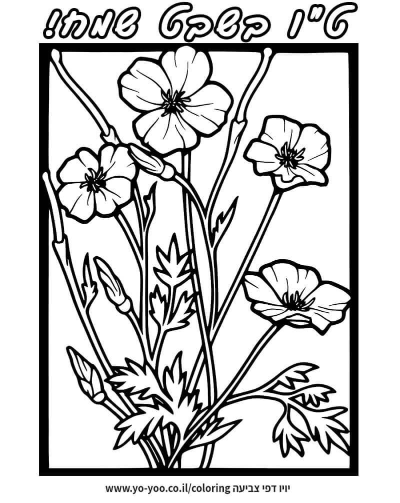 צביעת פרחים