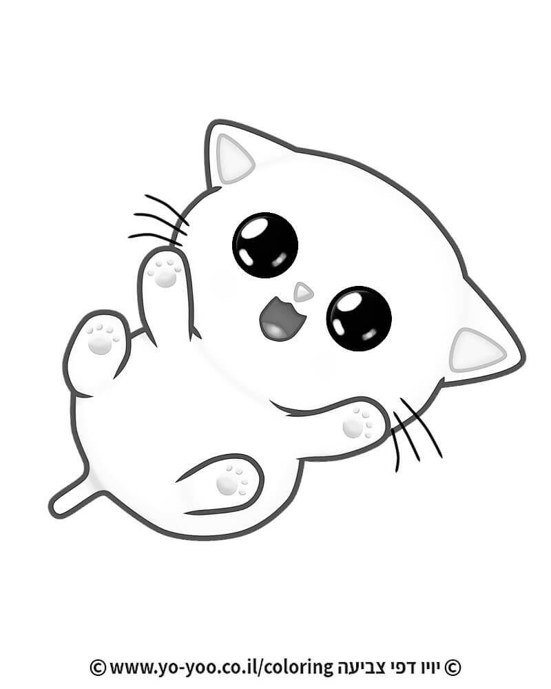 צביעת חתול משחק