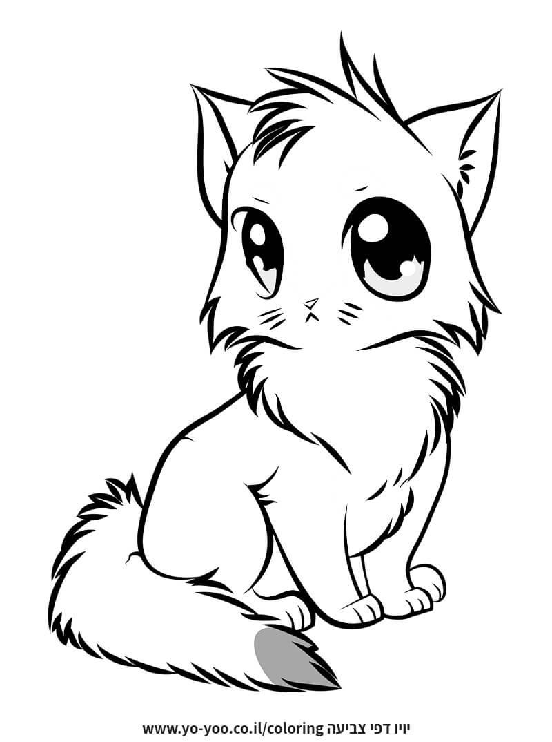 צביעת חתול חמוד