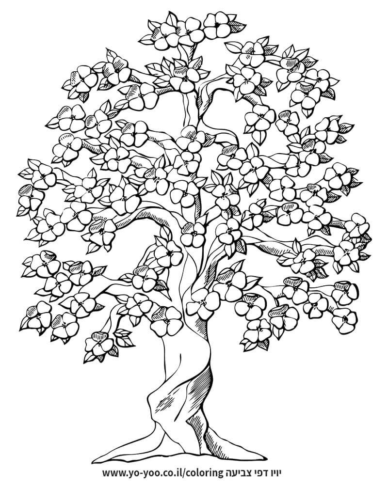 צביעת עץ פורח