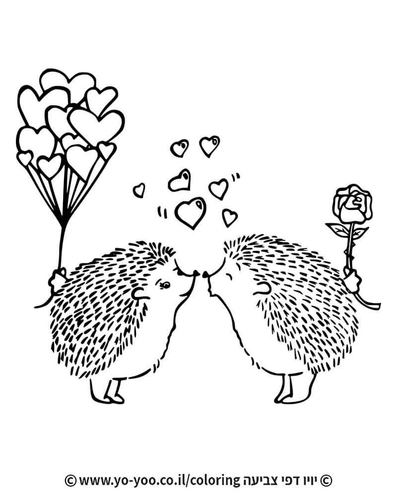 צביעת קיפודים מאוהבים