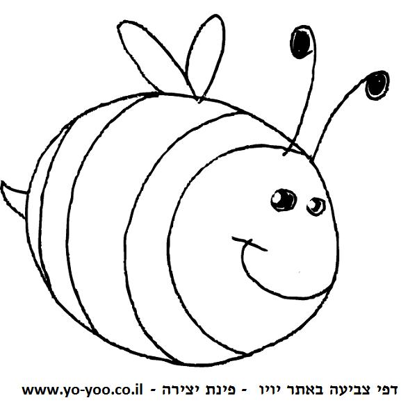 דבורה עגולה