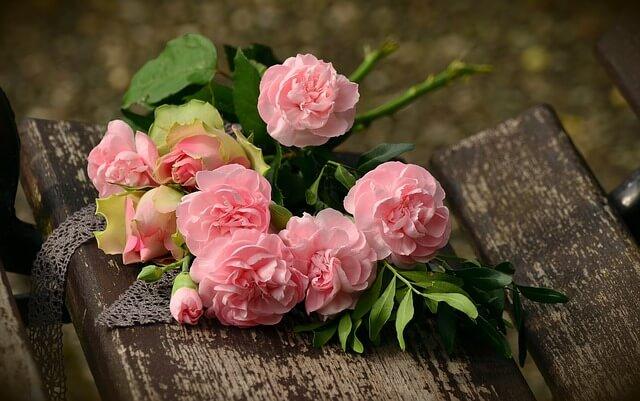 פרחים מהממים