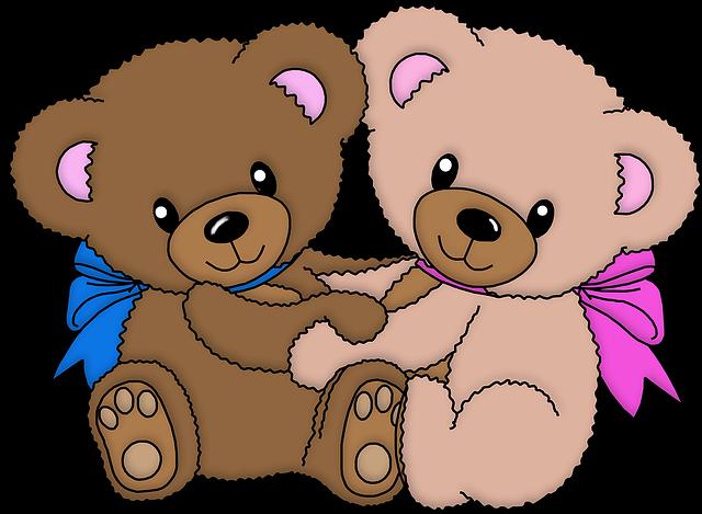 זוג דובונים מאוהבים