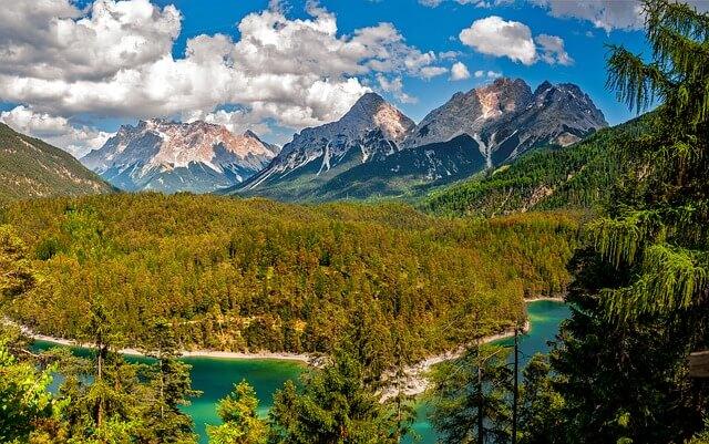 יער והרים