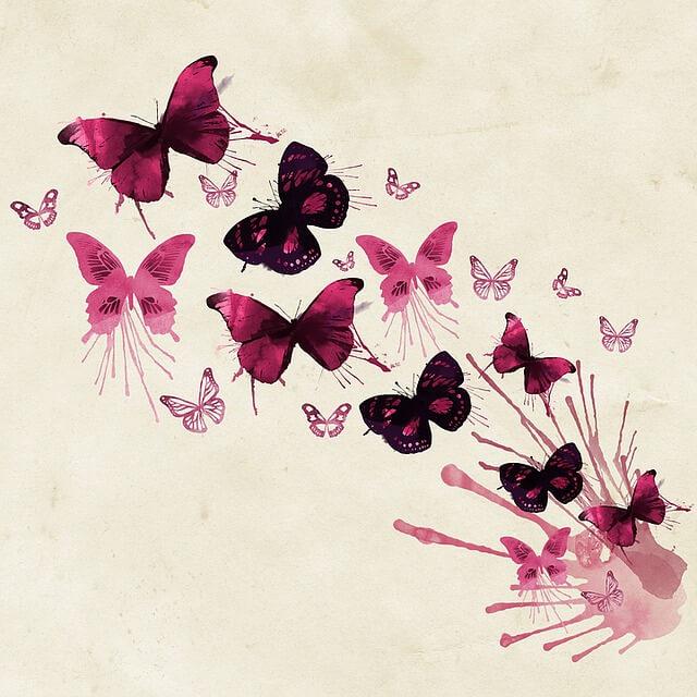 פרפרים יפים מצוירים