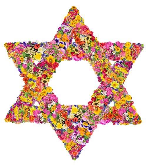 מגן דוד פרחים יפה
