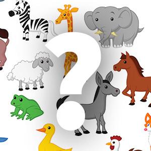 משחק השלמת האותיות עם חיות