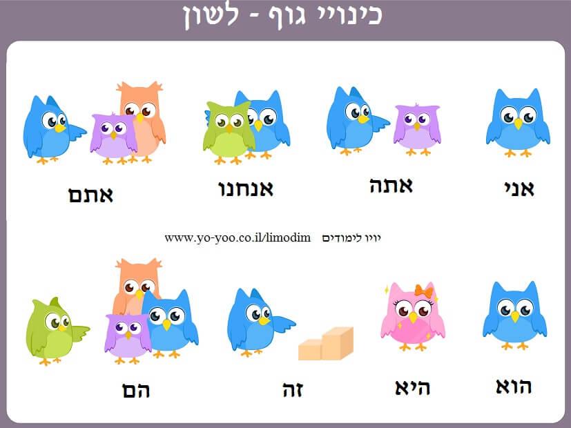 כינויי גוף בעברית