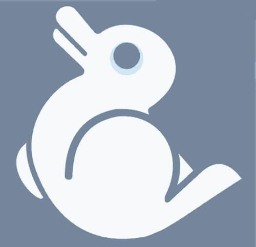 ארנב או ברווז