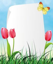 כרטיס עם פרחים ופר...